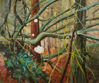 Het Rijsterbos by Siebrand Weitenberg