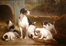 The Alert Mother, Female dog with five puppies by Otto Eerelman