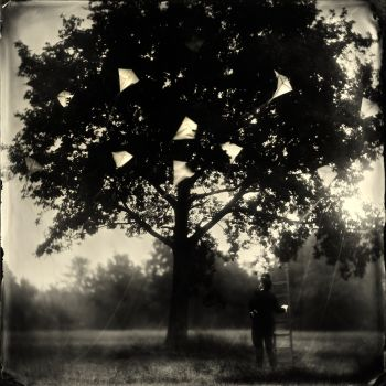 The Kite Runner, image size 86 x 86 cm, edition nr. 2/2AP by Alex Timmermans