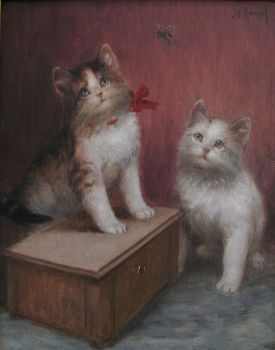 Kittens watching an insect by Josef Heimerl