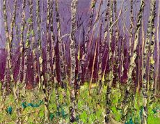 Purple sky birches by Gertjan Scholte-Albers