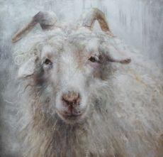 Angorageit by Jolanda Gerrmann