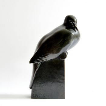 sitting pigeon by André Lasserre