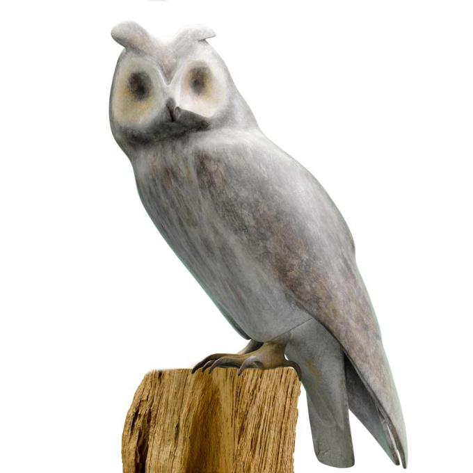 Long-Eared-Owl by Mark Dedrie