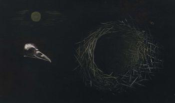 Vogelkopje en nestje by Tinus van Doorn