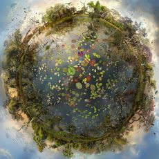 Okavango by Catherine Nelson