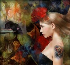 ASTRAY 2 by Christine Fokkelman