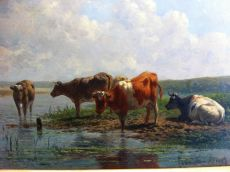 """""""Cows on the water"""""""