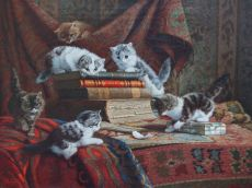 Kittens having fun