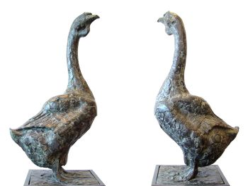 Afrikaanse gans by Coba Koster