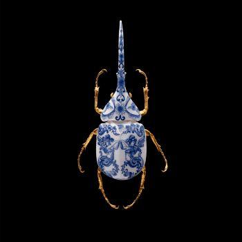 Anatomia Blue Heritage - Hercules Beetle Closed Wings by Samuel Dejong