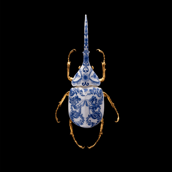Anatomia Blue Heritage - Hercules Beetle Closed Wings by Samuel Dejong