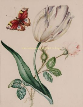 Tulip with rose and butterfly  by  James Holland