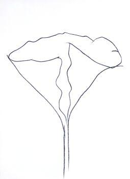 Flower, Hommage à Aimé et Marguerite Maeght by Ellsworth Kelly