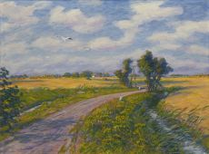 The Antumerweg near Garnwerd in summer by Johan Dijkstra