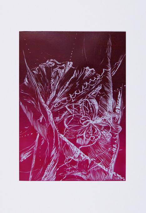 Imaginary Garden IV by Magdalena Chmielek