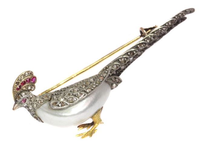 Antique French Victorian bird brooch pheasant with rubies and rose cut diamonds by Unknown Artist