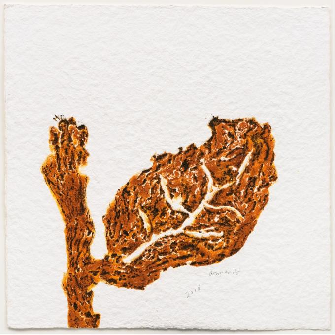 'Blatt (braun) by Armando .