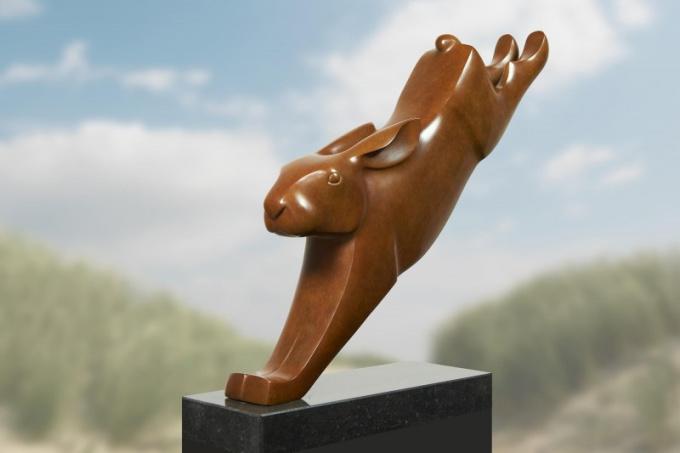 Springende haas  by Evert den Hartog