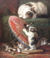 Kittens with parasol
