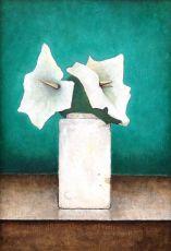Calla lilies in Kamerlingh Onnes vase